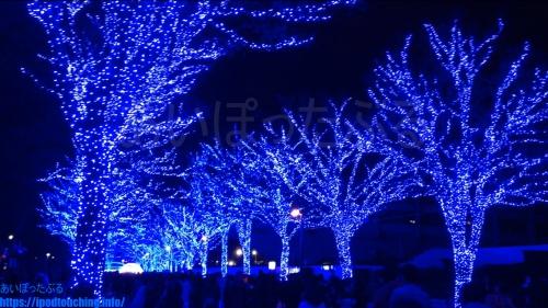 【青の洞窟 SHIBUYA】渋谷・2018年(代々木公園ケヤキ並木)